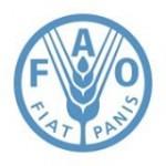 Organisation pour l'Alimentation et l'Agriculture in Mauritania