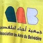 Association des Amis du Belvédère