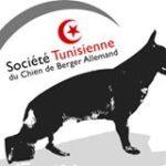 Association Tunisienne pour les chiens de berger allemand