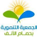 Association de Développement de Hammam Lif