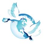 Bleu Organisation Mission